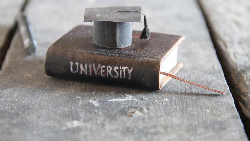 traducción del resguardo del título universitario
